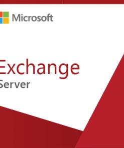 Microsoft Exchange Standard CAL 2019